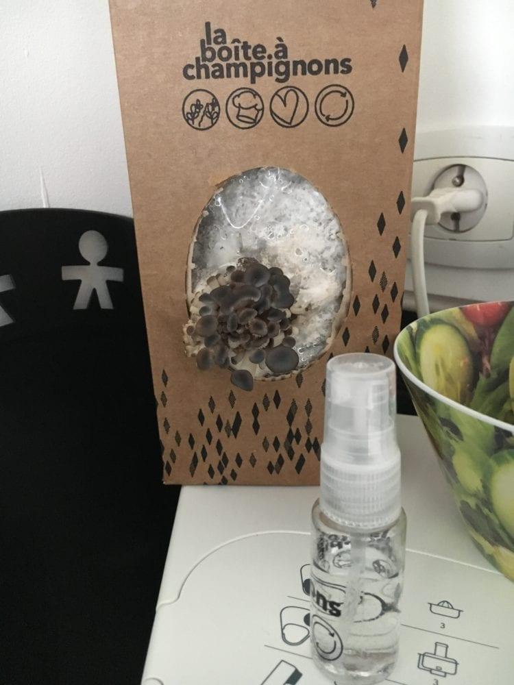 Boite-à-champignons_0839-750x1000 Test de la Boîte à Champignons : écologique et solidaire