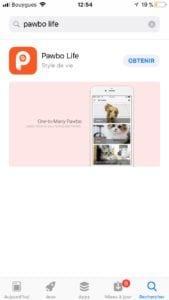Pawbo_7413-169x300 Présentation et test de Pawbo : Le bien-être de votre animal de compagnie