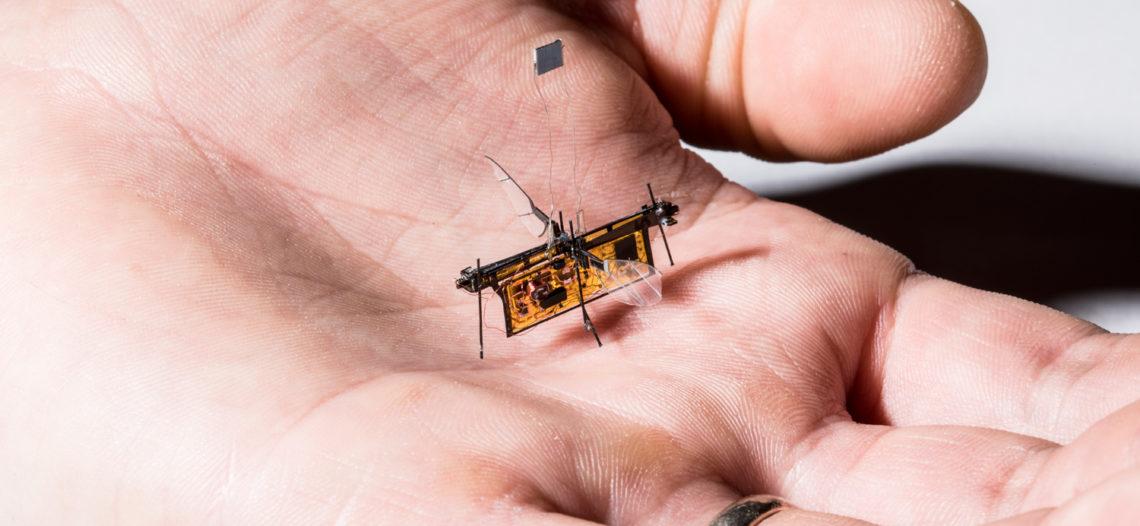 """Notre Veille : RoboFly est le premier robot insecte à voler sans être relié à un fil – Tech<span class=""""wtr-time-wrap block after-title""""><span class=""""wtr-time-number"""">1</span> min de lecture pour cet article.</span>"""