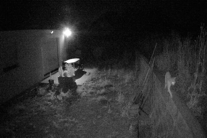 img-0118 [FOSCAM] Test de la solution de vidéosurveillance Foscam E1